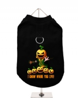 ''Halloween: Pumpkin Head'' Harness-Lined Dog T-Shirt